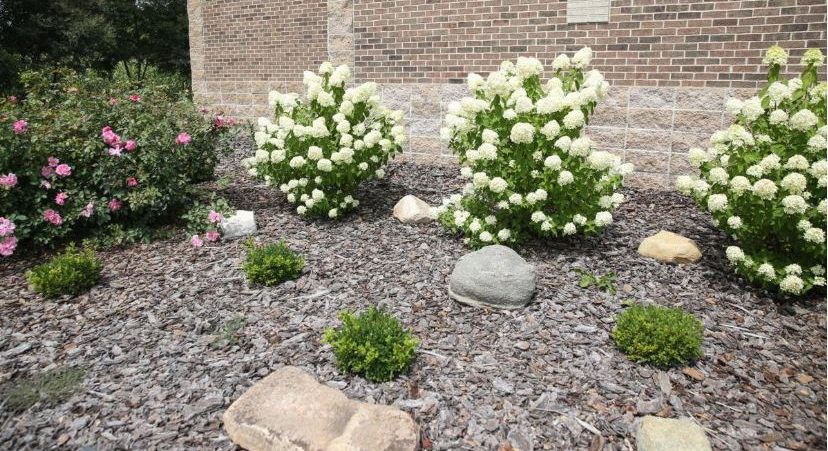 The landscaping at Messiah Lutheran Church in Mason City features flowers, stones and shrubs inspired by the Bible